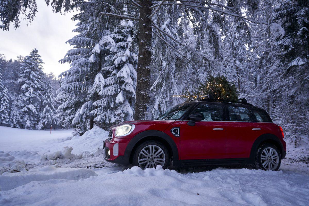mini Christmas